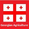 (English) Georgian Agriculture